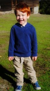 Henry Nov 2014